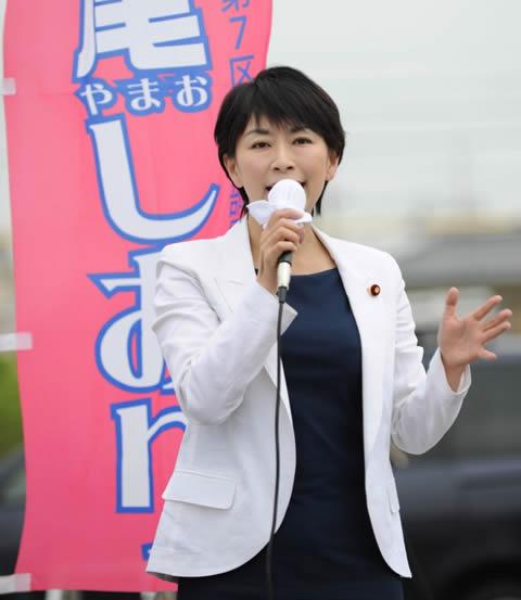 山尾志桜里 民主党での衆議院議員総選挙
